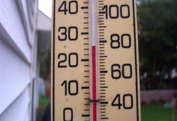 temperatuur vijverwater feat